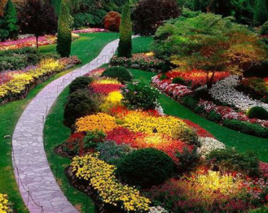 landscape-design-ideas
